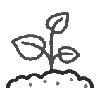 семена и рассада цветов
